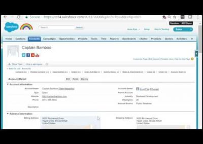 Salesforce for Enterprises – Accounts Pt. 1
